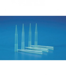 PIPETTE TIPS, TYPE: OXFORD PP, 250-1000ul, GREEN